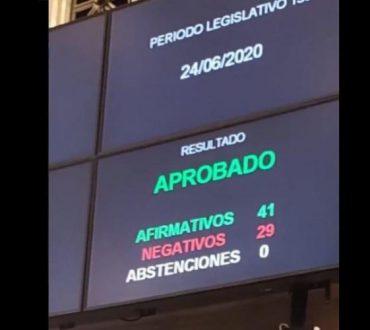 EL SENADO APROBÓ CREAR LA COMISIÓN BICAMERAL PARA INVESTIGAR A LA EMPRESA VICENTÍN.